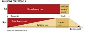 Compare Palliative vs standare care image.